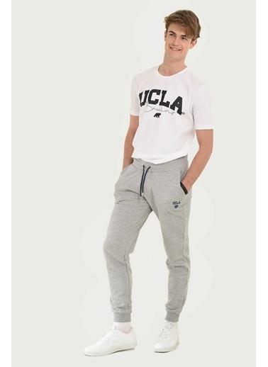 UCLA Eşofman Altı Gri